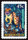 Postage stamp Australia 1997 Spotted-tailed Quoll, Tiger Quoll — Stock Photo