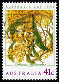 Postage stamp Australia 1990 Golden Wattle, Australia Day — Stock Photo