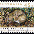 Stock Photo: Postage stamp Australi1992 ParmWallaby, Marsupial Animal