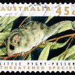 Stock Photo: Postage stamp Australi1992 Little Pygmy Possum