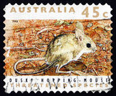 Postage stamp Australia 1992 Dusky Hopping Mouse, Rodent — Stock Photo