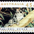 Stock Photo: Postage stamp Australi1992 Squirrel Glider, Marsupial Mammal