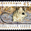 Stock Photo: Postage stamp Australi1992 Long-tailed Dunnart, Marsupial Mamm