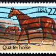 Postage stamp USA 1985 Quarter Horse, Race Horse — Stock Photo