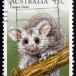 Stock Photo: Postage stamp Australi1990 Greater Glider, Marsupial Mammal
