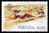 Postage stamp Portugal 1984 Cheetahs, Lisbon Zoo Centenary — Stock Photo