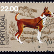 Postage stamp Portugal 1981 Podengo, Breed of Dog from Portugal — Foto de Stock