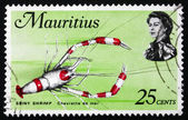 Postage stamp Mauritius 1969 Spiny Shrimp, Crustacean — Stock Photo
