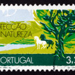Stock Photo: Postage stamp Portugal 1971 Nature Conservation, Earth