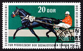 Postage stamp GDR 1974 Trotter, Race Horse — Stock Photo