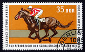 Postage stamp GDR 1974 British Thoroughbred Race Horse — Stock Photo