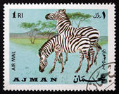 Zèbre de timbre-poste ajman 1969 des plaines, equus quagga, animal — Photo