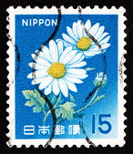 Postage stamp Japan 1966 Chrysanthemums, Perennial Flowering Pla — Stock Photo
