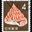 Stock Photo: Postage stamp Jap1963 Emperor's Slit Shell, SeSnail