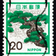 Stock Photo: Postage stamp Jap1972 Pine, Tree, Pinus