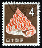 Postage stamp Japan 1963 Emperor's Slit Shell, Sea Snail — Stock Photo