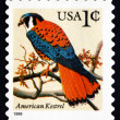 Postage stamp USA 1995 American Kestrel, Falcon — Stock Photo