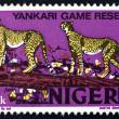 Постер, плакат: Postage stamp Nigeria 1973 African Leopards