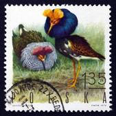 почтовая марка польша 1970 ершей, игра птица — Стоковое фото