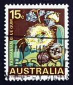 Znaczek australia 1968 tasmanian blue gum, drzewo — Zdjęcie stockowe