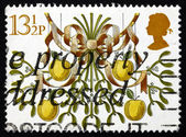 Postage stamp GB 1980 Mistletoe and Apples, Christmas — Stock Photo