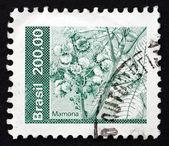 Postage stamp Brazil 1982 Mamona, Castor Oil Plant — Stock Photo