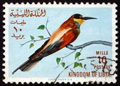Postage stamp Libya 1965 European Bee Eater, Bird — Stock Photo