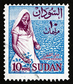 Postage stamp Sudan 1962 Cotton Picker — Stock Photo