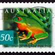Postage stamp Australia 2003 Orange-thighed Tree Frog, Amphibian — Stock Photo