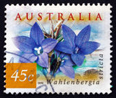 Postage stamp Australia 1999 Australian Bluebell, Wildflower — Stock Photo