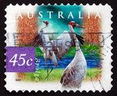 Postage stamp Australia 1997 Brolga, Wetland Bird — Stock Photo