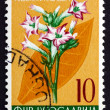 Postage stamp Yugoslavia 1955 Tobacco, Perennial Herbaceous Plan — Stock Photo