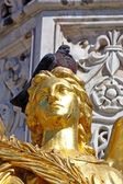 Pigeon on the head of angel near Cathedral of Virgin Mary, Zagre — Стоковое фото