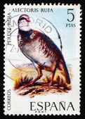 Postage stamp Spain 1971 Red-legged Partridge, Bird — Stock Photo