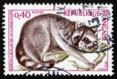 Postage stamp France 1973 Guadeloupe Raccoon, Animal — Stock Photo