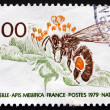 Stock Photo: Postage stamp France 1979 Honey Bee, Apis Mellifica