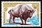 Postage stamp France 1974 European Bison, Bison Bonasus — Stock Photo