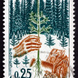 Foto de Stock  : Postage stamp France 1965 Planting Seedling