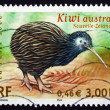 Stock Photo: Postage stamp France 2000 Kiwi, Endangered Bird