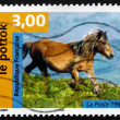 Stock Photo: Postage stamp France 1998 Pottok, Horse
