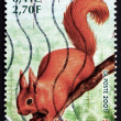 Postage stamp France 2001 Red Squirrel, Animal — Stock Photo