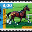 Postage stamp France 1998 French Trotter, Horse — Stock Photo #29000687