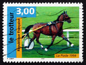 Postage stamp France 1998 French Trotter, Horse — Stock Photo