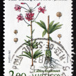 Postage stamp France 1983 Martagon Lily, Flowering Plant — ストック写真