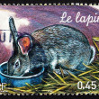Stock Photo: Postage stamp France 2004 Rabbit, Farm Animal