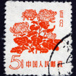 Postage stamp China 1958 Chrysanthemums, Flowering Plant — Stock Photo