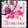 Briefmarke China 1958 Pfingstrose, Paeonia, blühende Pflanze — Stockfoto
