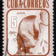 Stock Photo: Postage stamp Cub1981 Hutia, Rodent, Mammal