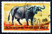 Postage stamp Burundi 1964 African Buffalo, Syncerus Caffer — Stock Photo