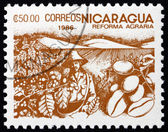 Postage stamp Nicaragua 1986 Coffee Beans, Agrarian Reform — Stock Photo